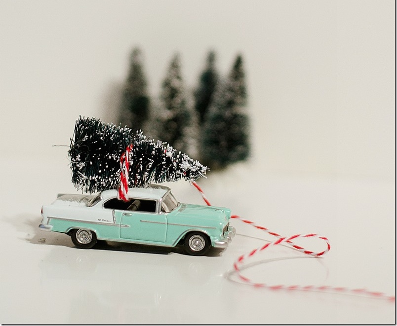 car-with-tree-in-mason-jar-christmas-decoration-9_thumb